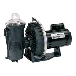 Pentair 345209 Challenger Pool Pump